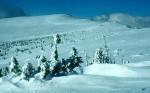 BB Gipfelmulde vor dem Wetterkoglerhaus WEB Scan1517