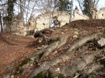 Am Wildoner Schlossberg