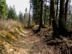Grenzweg vom Radlpaß