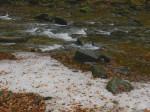 BB Letzter Schnee an der Laßnitz WEB DSCN0227