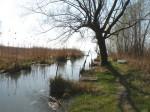 AB Uferkanal WEB DSCN9271