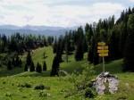 Wegweiser auf der Feldbauernalm