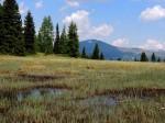 BB Flachmoor am Seenrundweg, über die Wasserscheide hinweg
