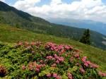AB Östlicher Gipfelhang gegen Wölzer Tauern