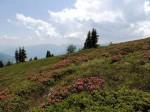 BB Abstieg über den Südostrücken gegen Gurktaler Alpen
