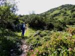 Aufstiegsweg vor der Eisenstatt (tt !)