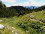 BB Karstmulde westlich Moarhochalm mit Hasenfuß und Dürrenstein WEB DSCN2190