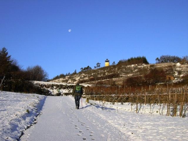 Donauwarte und Mond