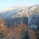 Beim Abstieg - der Traflberg im nachmittäglichen Sonnenlicht.
