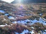 Schneereste im Nordhang