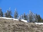 Anraum - Eis-Schnee von vorgestern