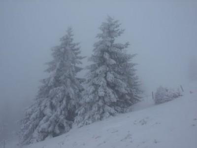 Das Bild täuscht - so winterlich wars auch wieder nicht!