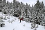 Hinaufwühlen am Gipfelhang