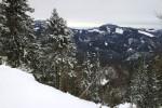 Blick zu Hochstaff (re) und Reisalpe (links zw. den Bäumen)