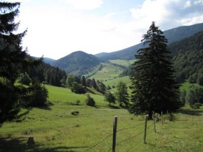 Rohrbachgraben