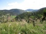 Blick vom Anstieg auf den Gahns über den Rohrbachgraben