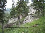 Felsklippe mitten im Wald