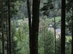 Tiefblick auf Kirche und Friedhof von Schwarzau