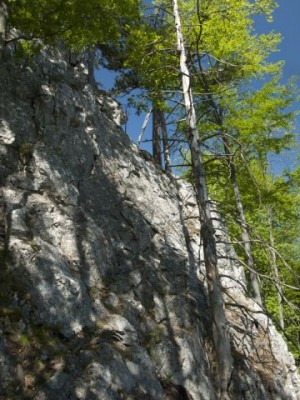 Die erste Kletterstelle