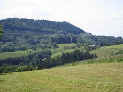 Steinwandleiten und rechts der Hof Auer-Berger