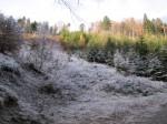 Im Tal noch kalt und Rauhreif