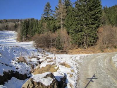 Am Beginn der (eisigen) Forststraße