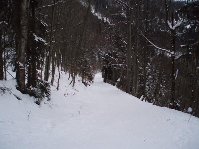 eisenstein4109-7