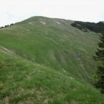 Grasrücken zum Gipfel