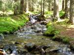 netter Weg zur Schoberhütte entlang des Baches