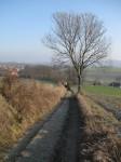 Am Weg nach Franzen bei Frättingsdorf